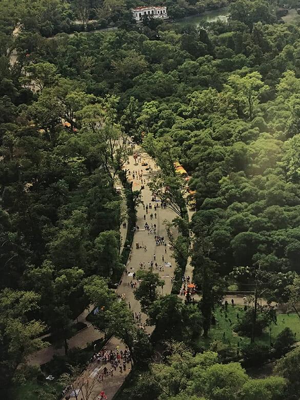 Fotografía aérea del bosque de Chapultepec